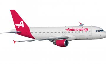 Animawings Airbus A320