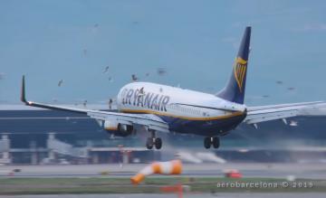 Ryanair 737 birdstrike