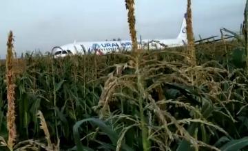 Ural Airlines crash